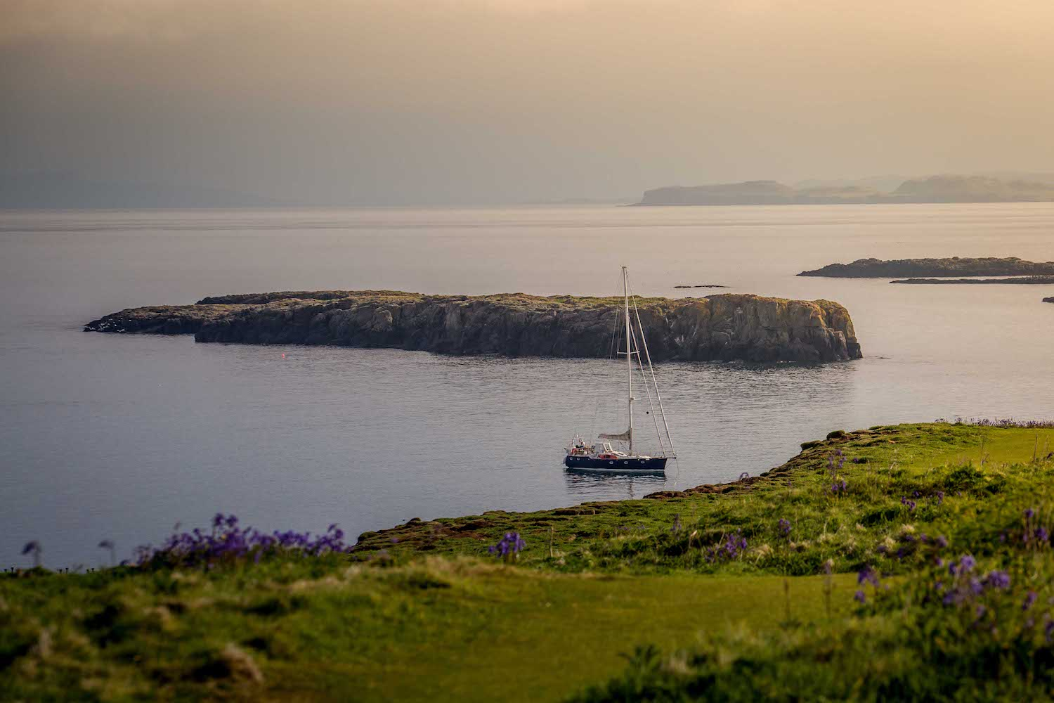 Sailing with puffins on Lunga