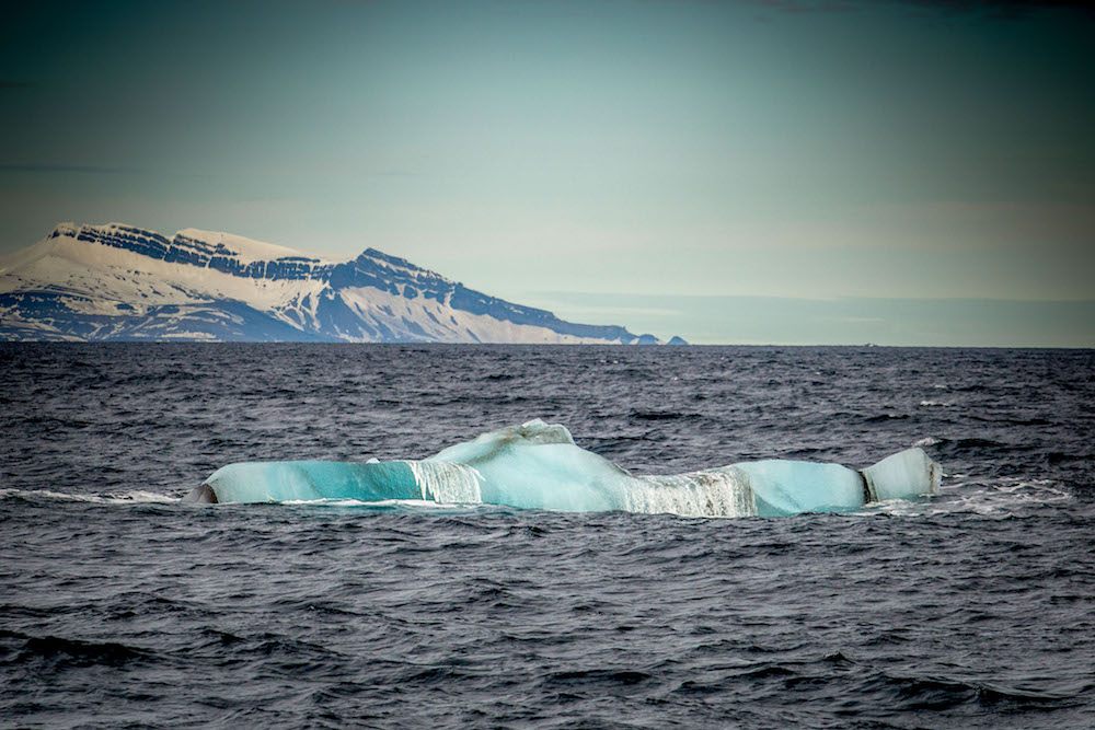 Iceberg of the souther point of Svalbard