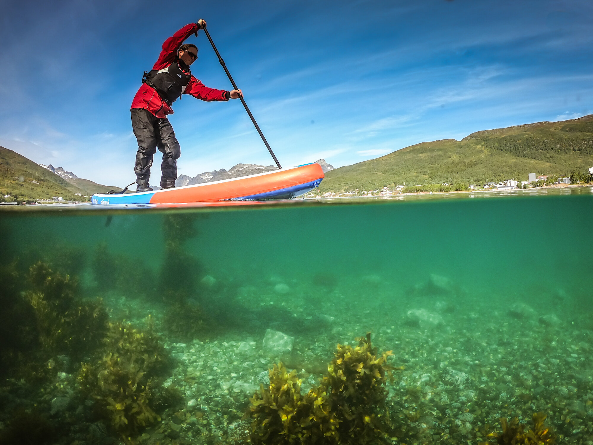 Paddleboarding gives a unique perspective on the underwater world