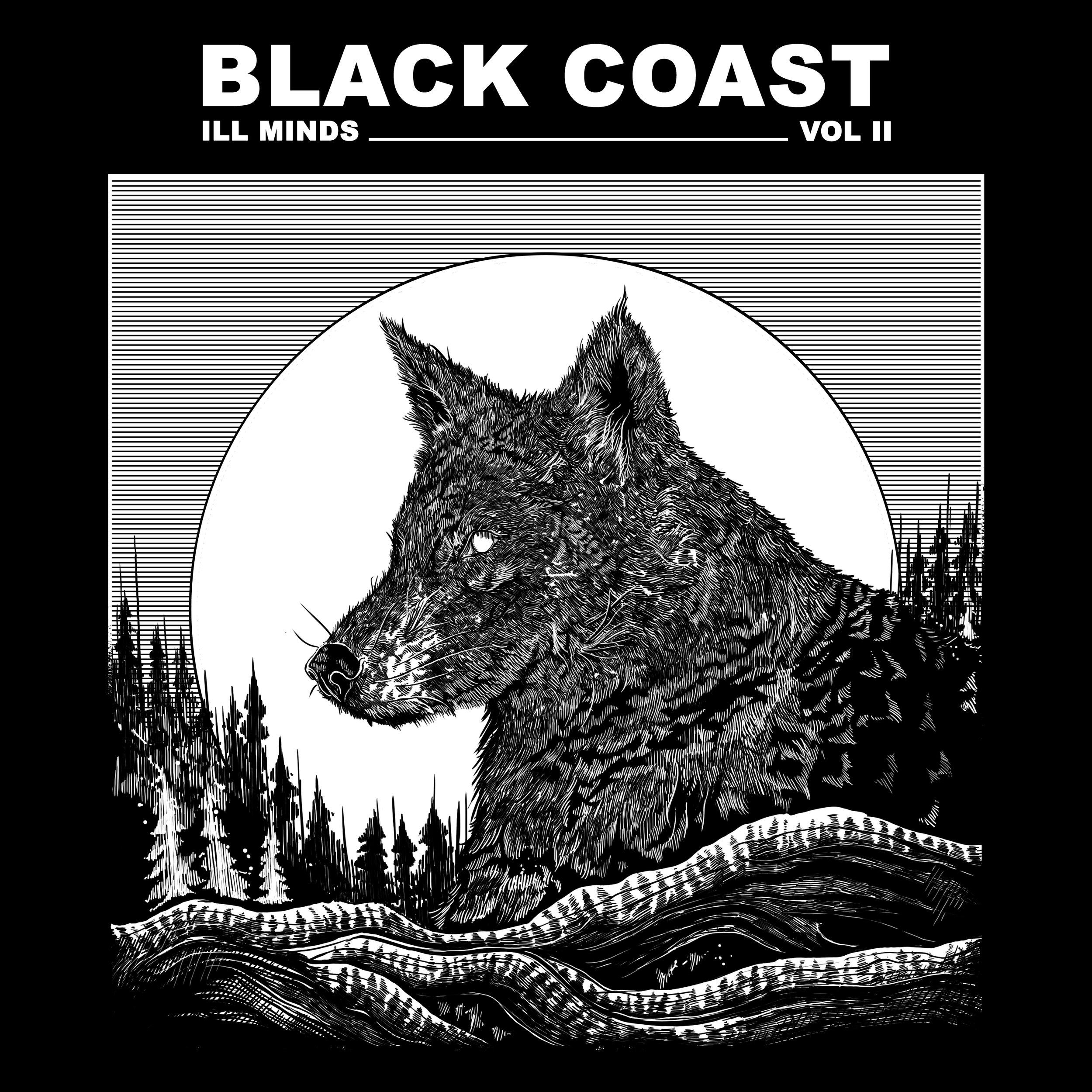 blackcoast_IM2.jpg