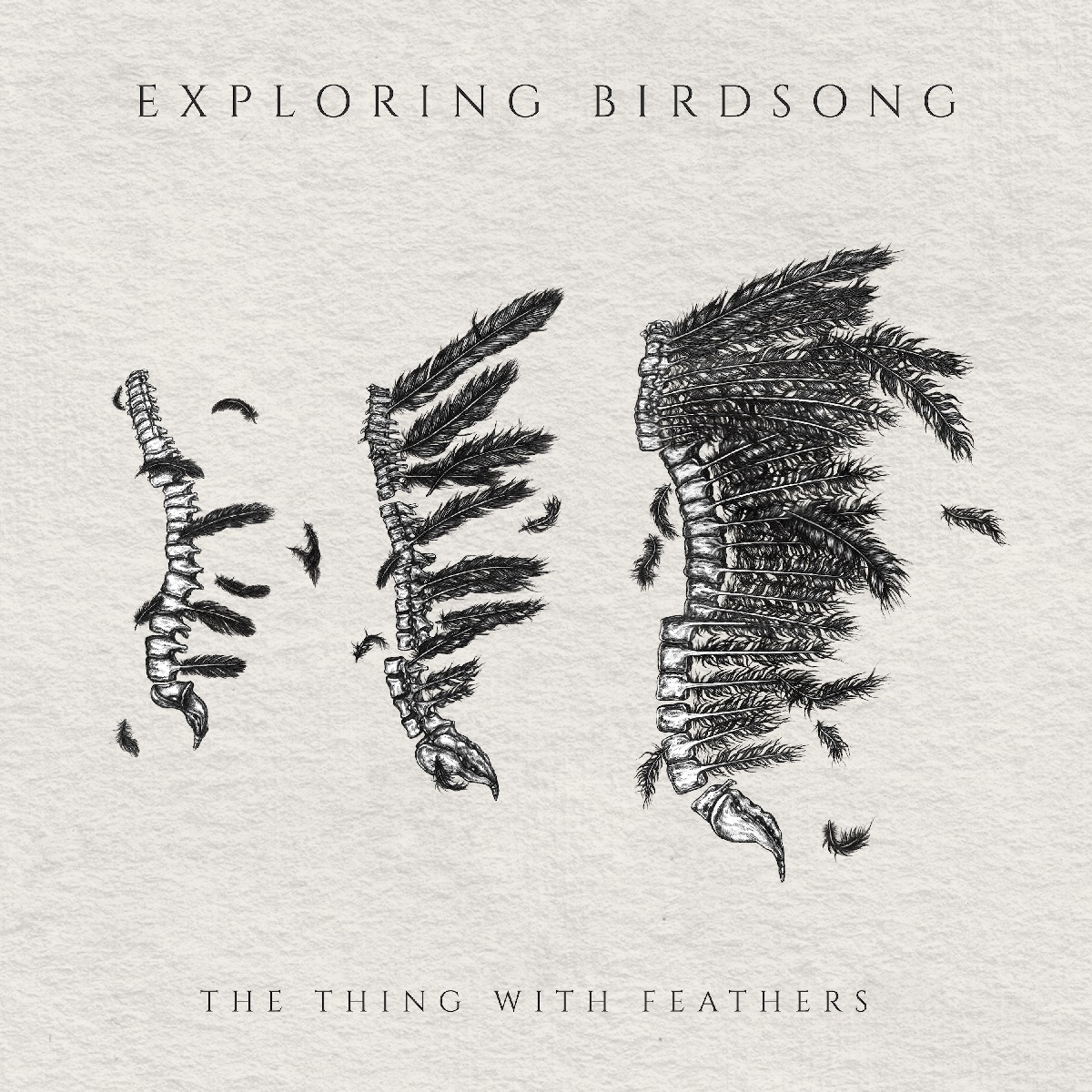 Exploring Birdsong - The Thing With Feathers EP_FINALresize.jpg