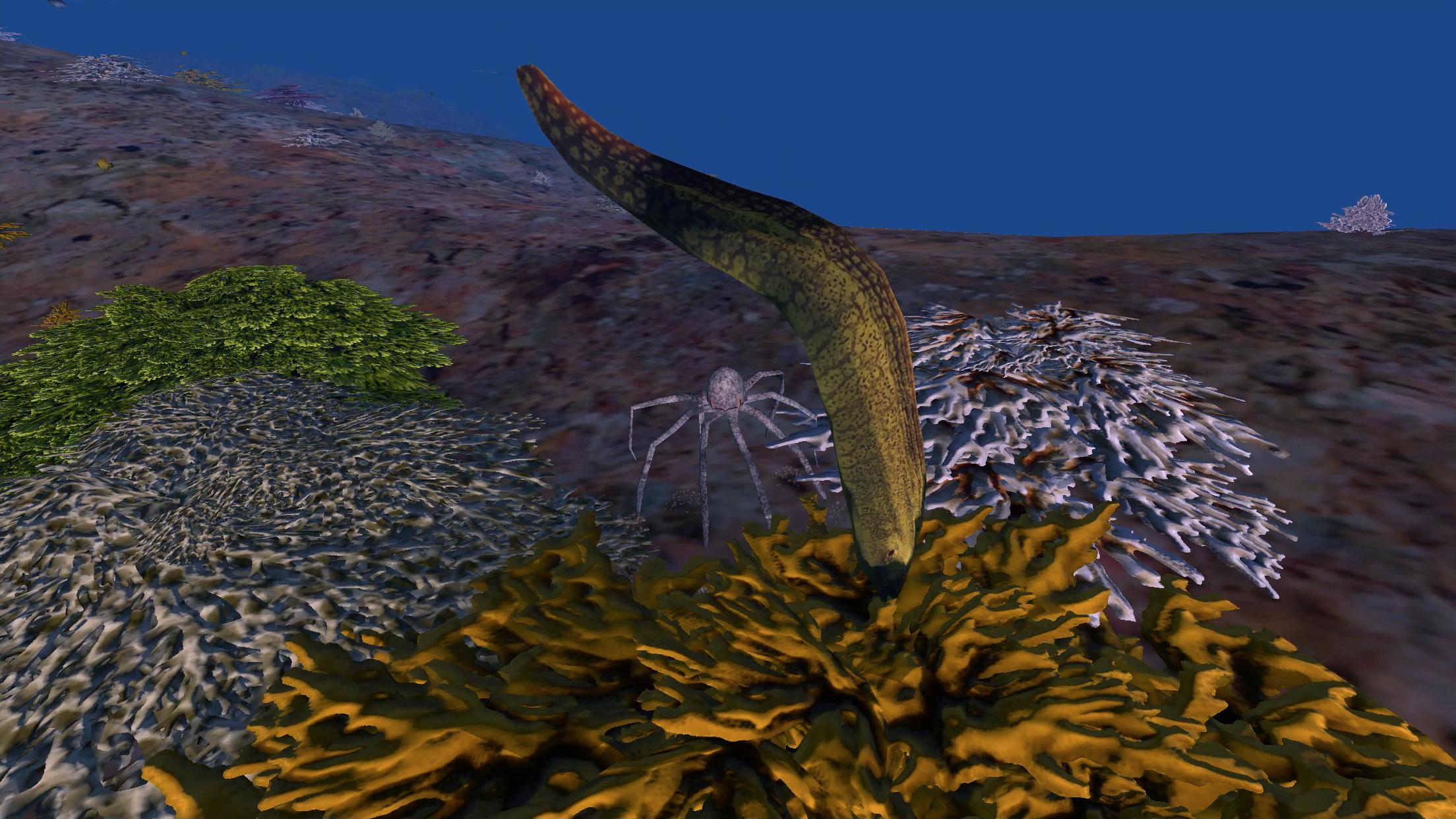 Robocto - Location: Hawaii (moray eel hiding in coral) - iPhone