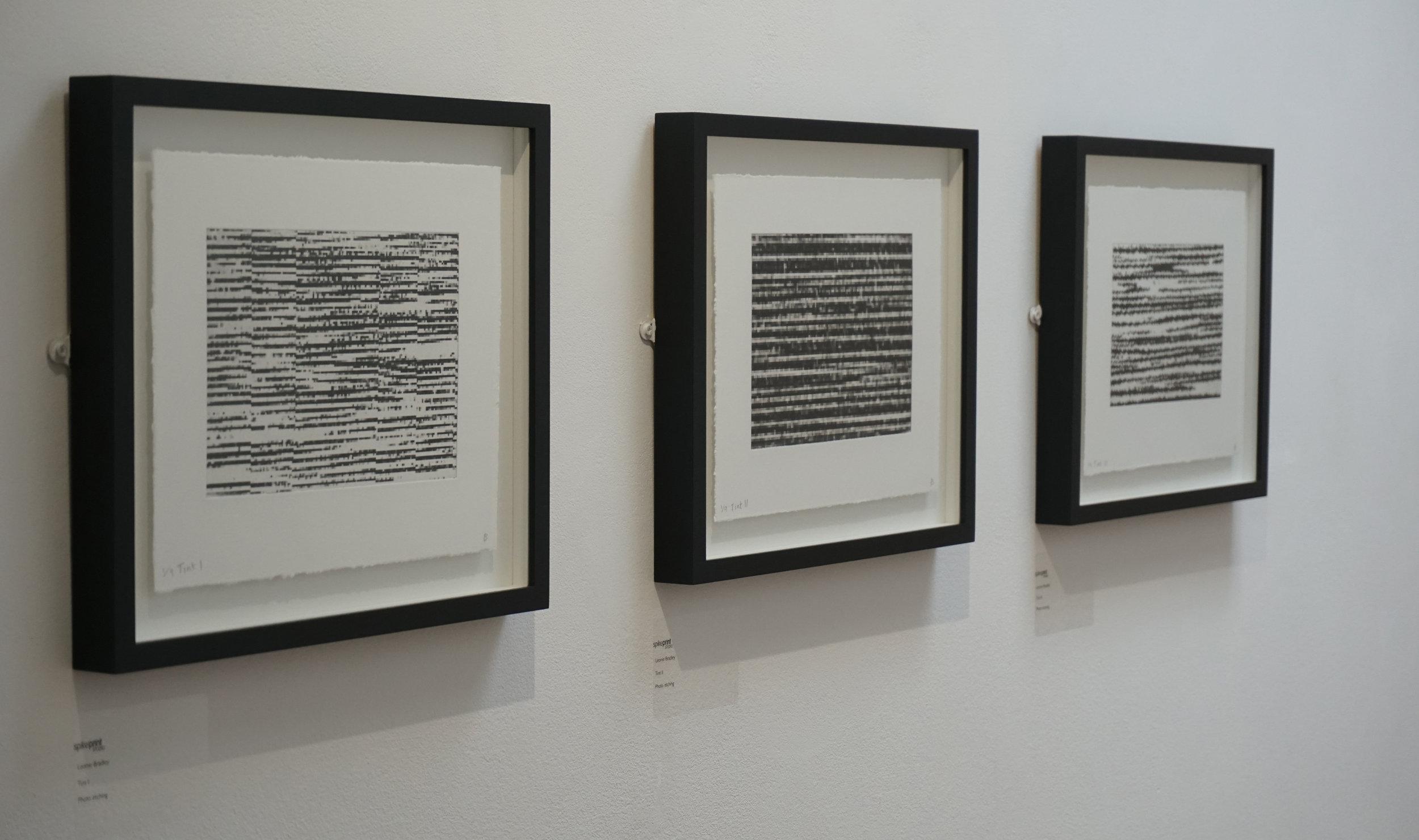 Tint I, II & III installation view
