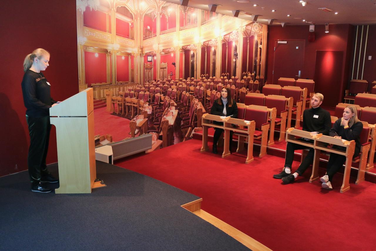 Utdrag Stortinget 2019 - 15 of 47.png