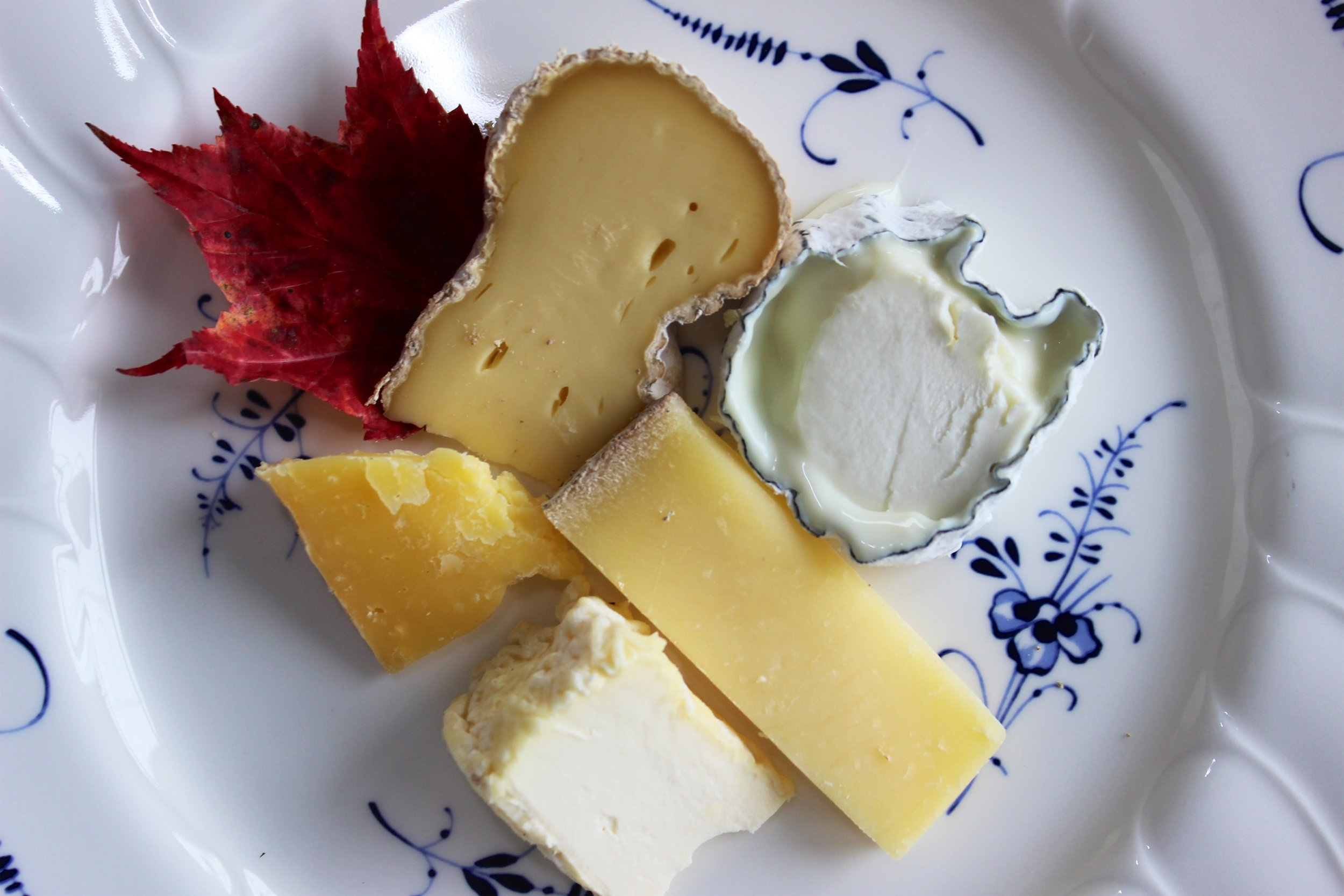 A Fall Adirondack cheese plate by Carriage House Cooking School. Cheeses (clockwise from from top left): Poundcake | Sugar House Creamery, Barkeater Buche | Asgaard Farm and Dairy, Dutch Knuckle | Sugar House Creamery, Little Dicken | Sugar House Creamery, Courron | North Country Creamery.