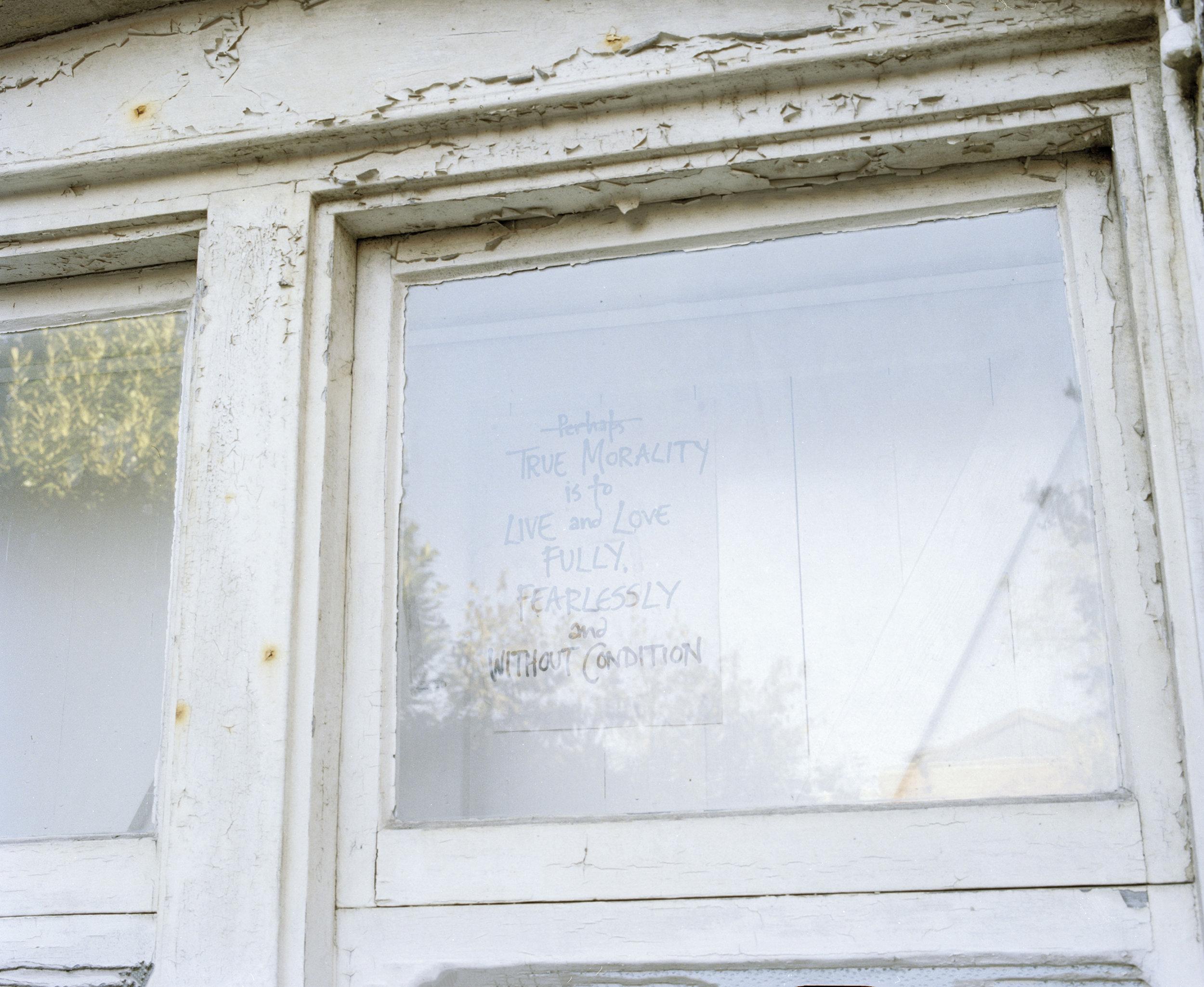 In the Window.jpg