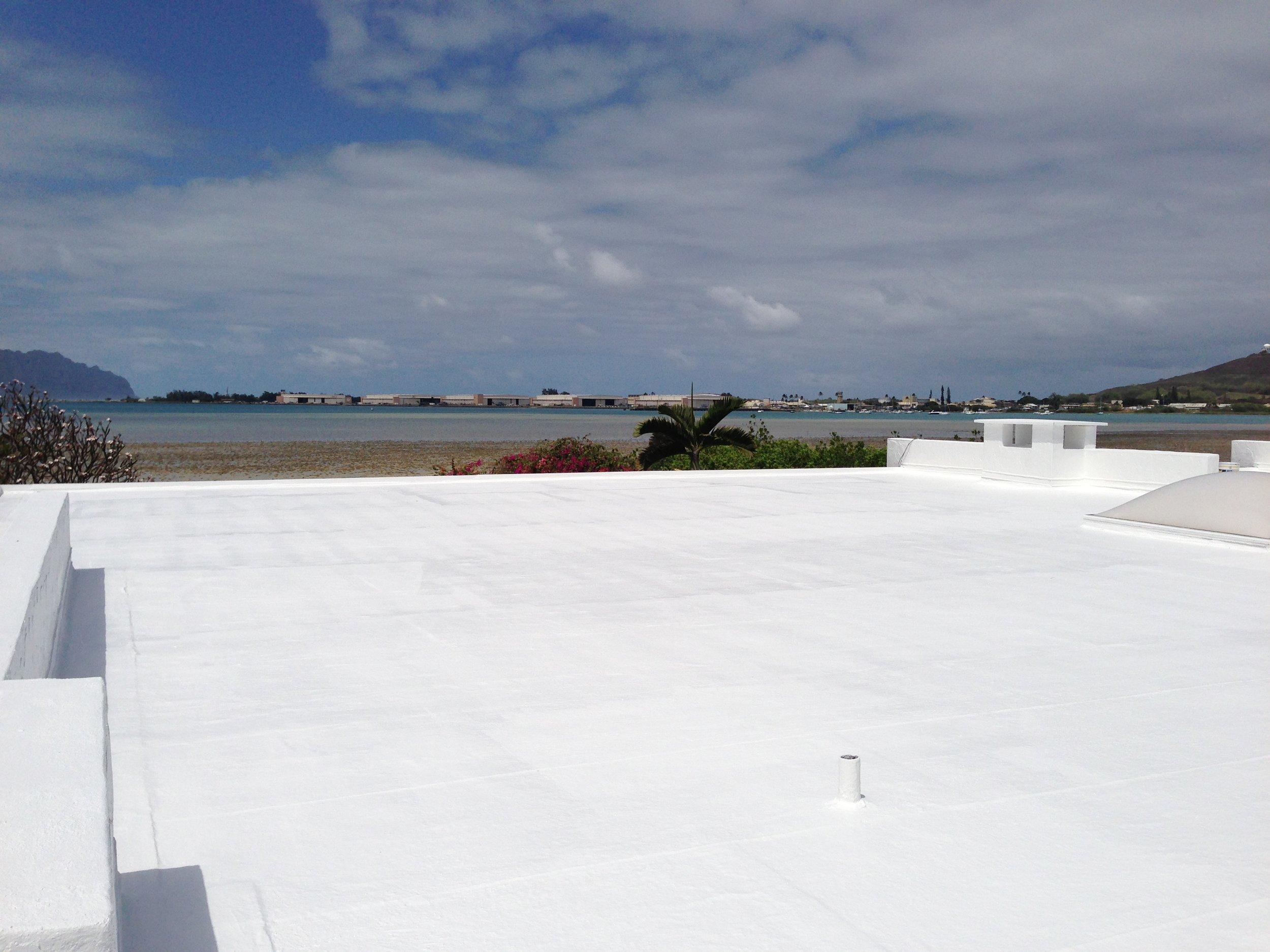 acryllic roof.jpg