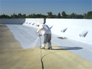 SPF roof.jpg