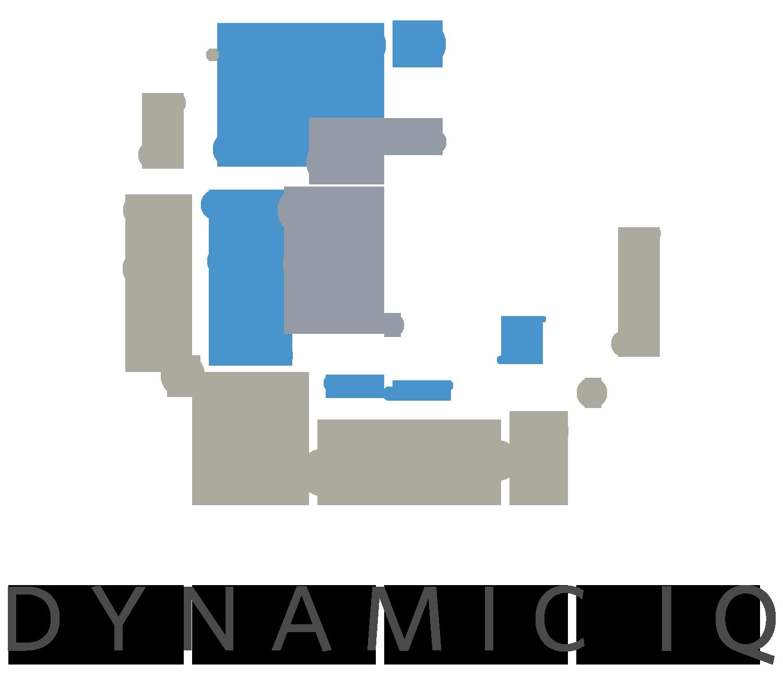 Dynamic IQ logo 2.png