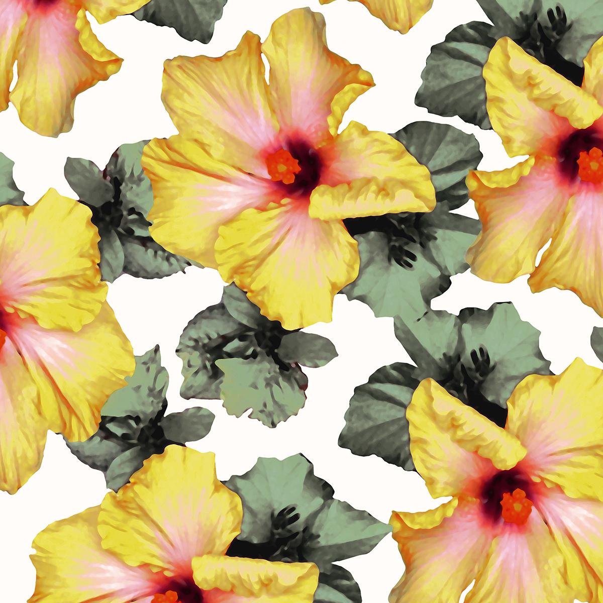 Pineapple Flower Lemon