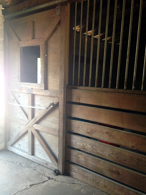 whispering-winds-equestrian-facilities-7.jpg