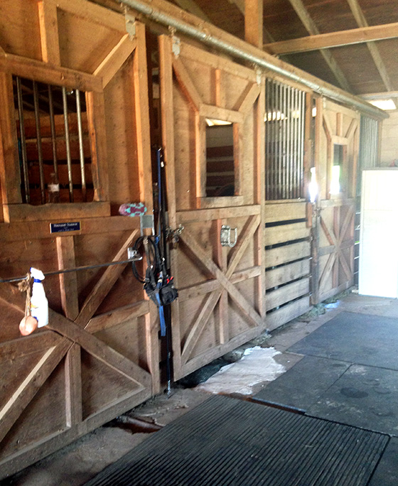 whispering-winds-equestrian-facilities-3.jpg