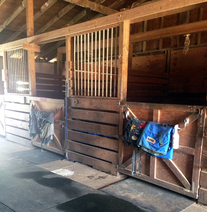 whispering-winds-equestrian-facilities-4.jpg