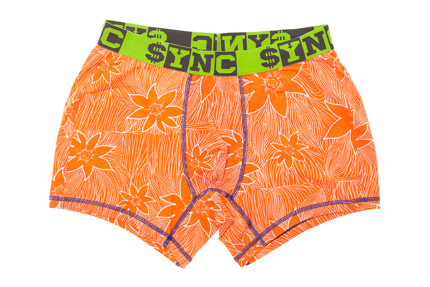 SYNC_briefs_06.png