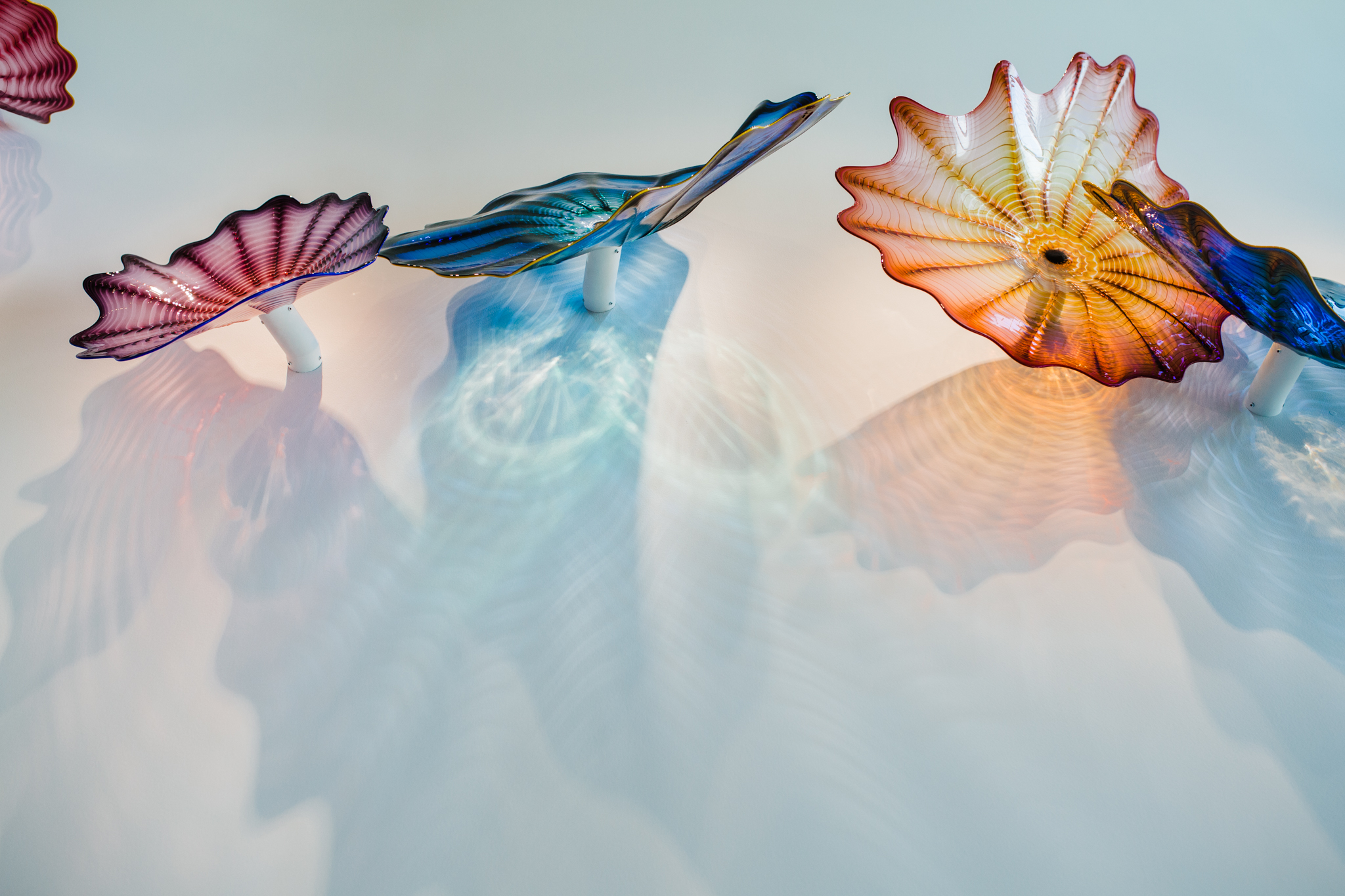 Chihuly at the Crocker Art Museum