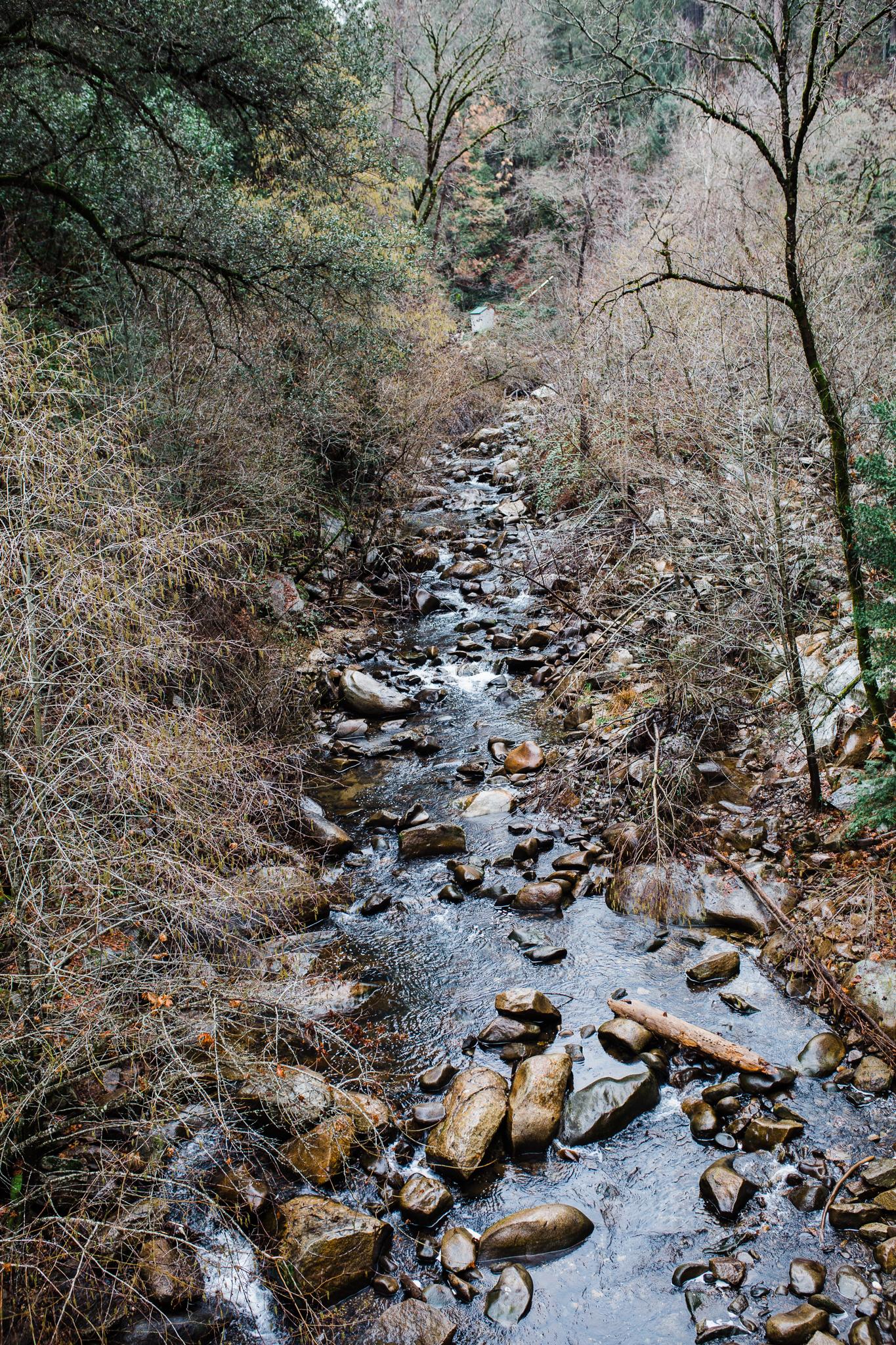 Deer Creek Tribute Trail | Lenkaland Photography