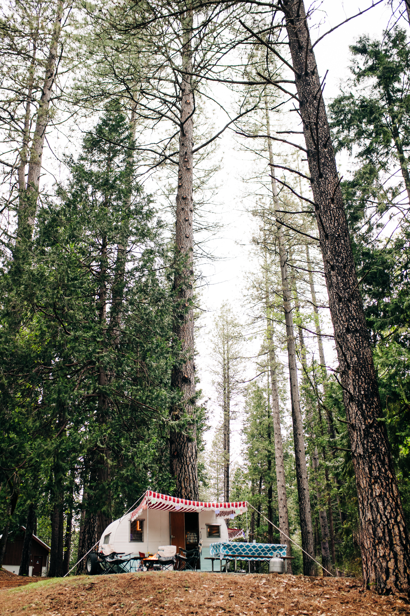 PhotoWalk at the Inn Town Campground with Nevada City Scenics |