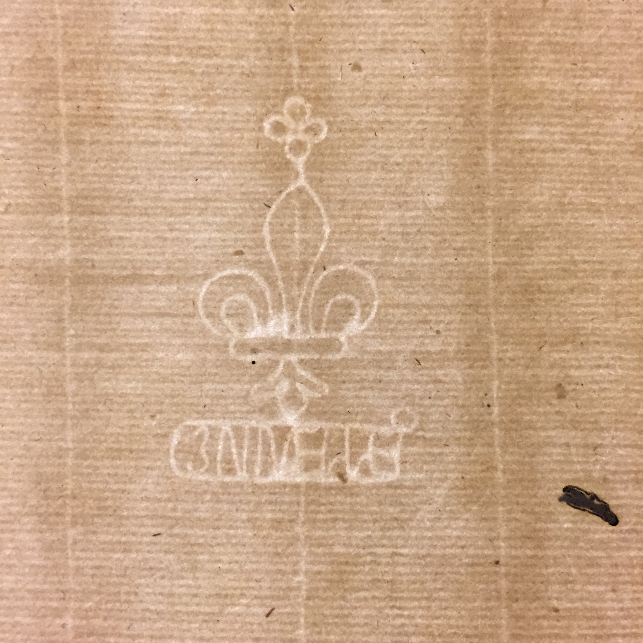 A watermark from some of the paper I have been using recently. Can't tell exactly but it looks like it reads Ennelle but a Google search reveals nothing. Message me if you have any leads.