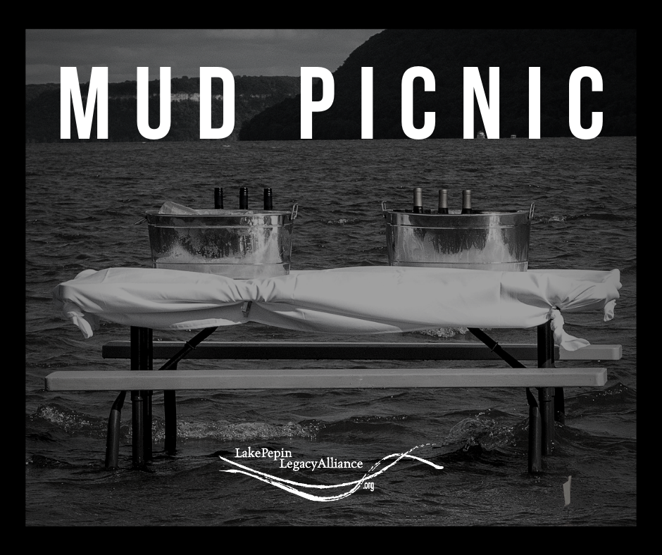 Mud Picnic Website AD.png