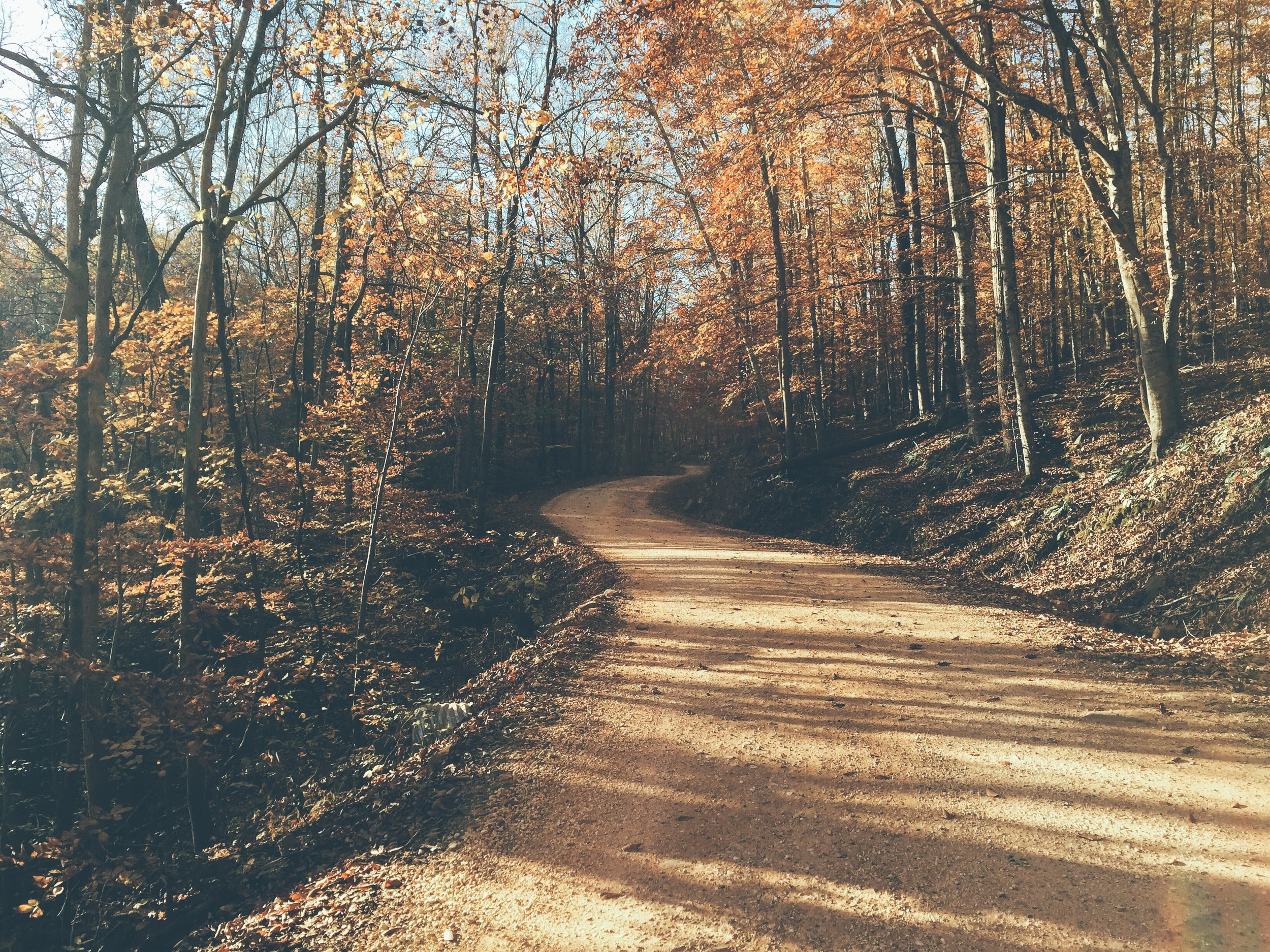 Path to Hawksbill Crag