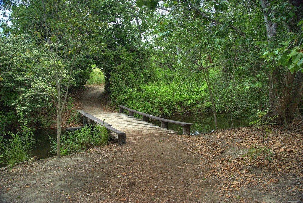 El_Dorado_Nature_Park_Photo_by_Flickr_jayson0110.jpg