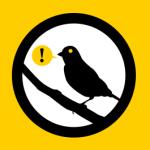 """""""warrant canary"""""""