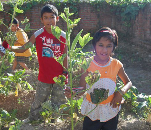 Some land has been rented where the children have created a garden.
