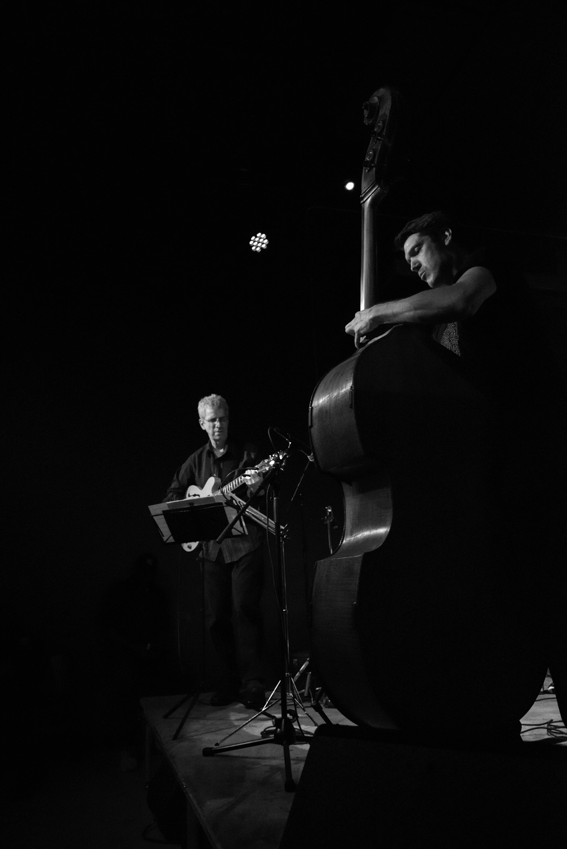 Steve Cardenas and Ben Allison, 2016