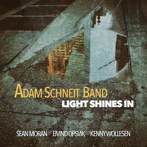adam-schneit-light-shines-in-2017
