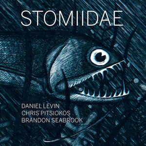 daniel-levin-stomiidae-album-review.jpg