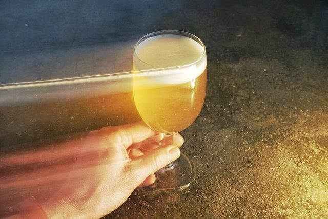 Dangerous Coats is now on draft in the new space. This is a 5.75% Saison brewed with pink rose buds and three varsities of Holy Basil; Pilsner and spelt malt; aged hops; fresh sazz, styrian general, and styrian aurora. Notes of subtle rose and tulsi Rama, with creamy vanilla pasta water, almost dried herbs, sugar candy and trippy bubble chewing gum.