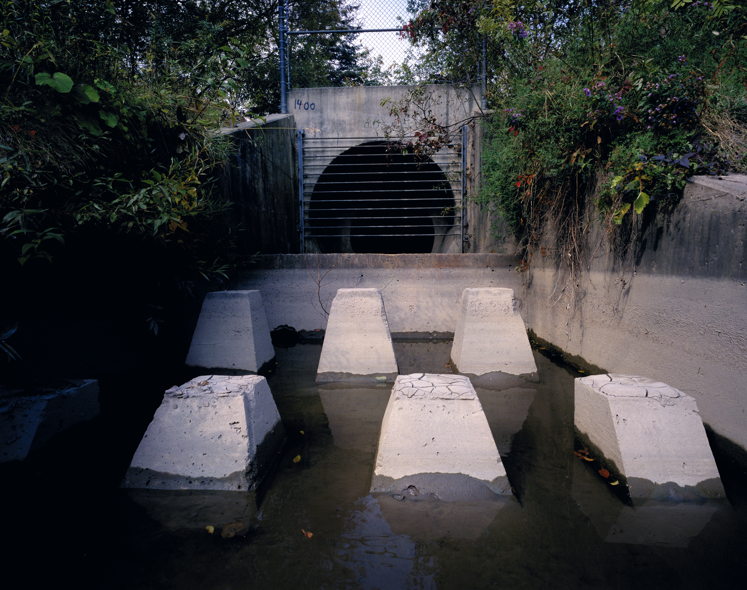 Rouge River Culvert (2003)