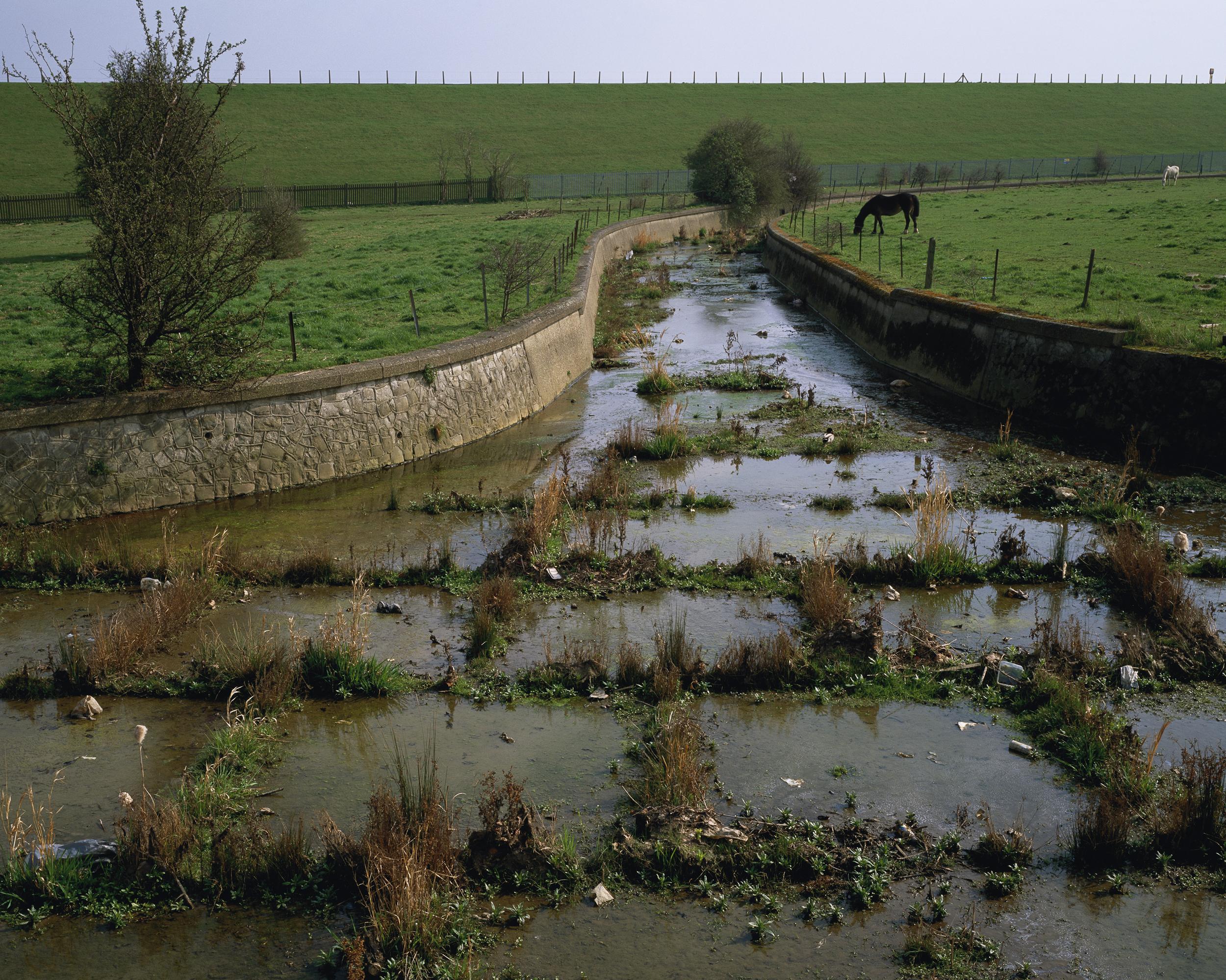 South Marsh, King George's Reservoir (2005)