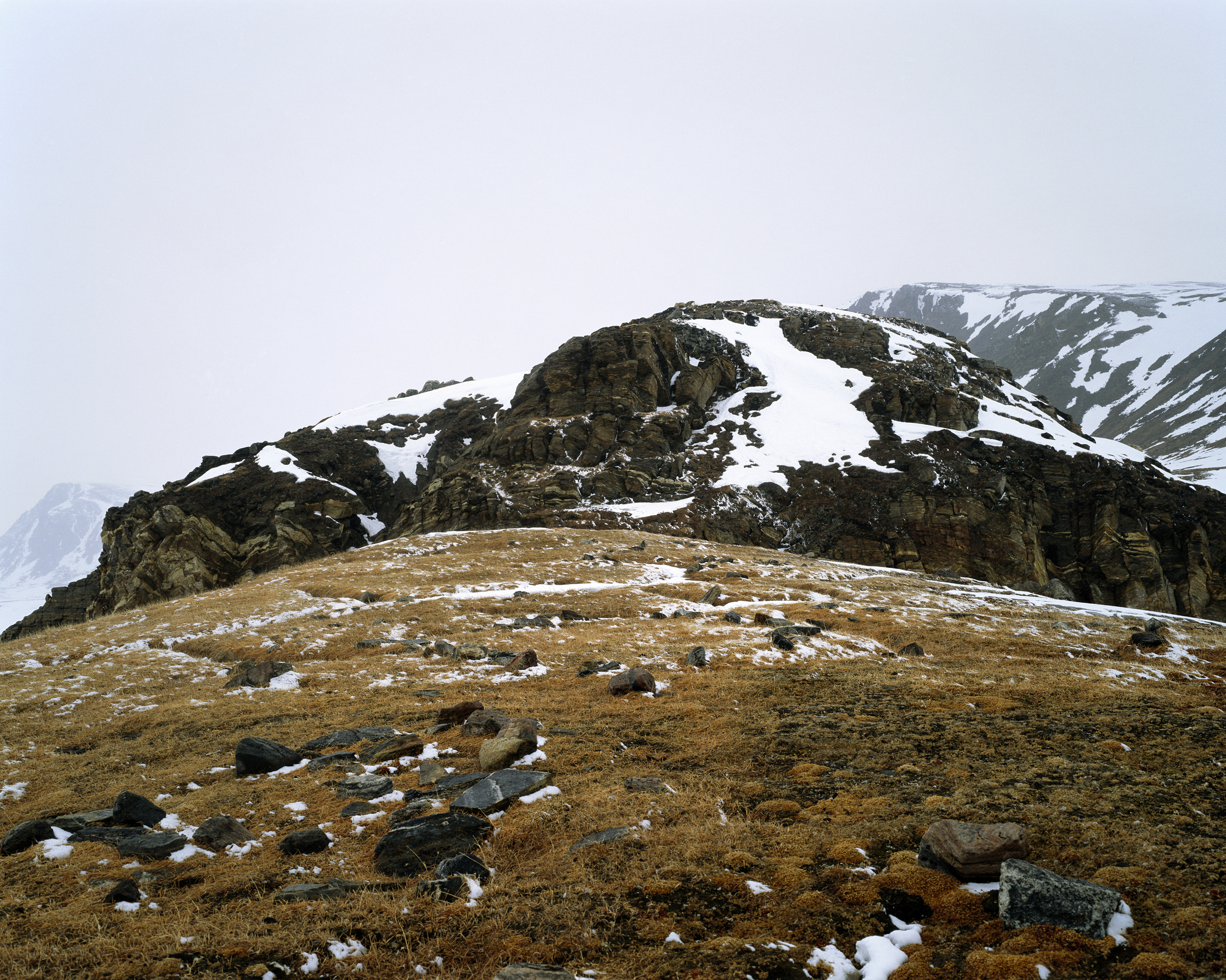 Spring Grass, Bylot Mountains (2007)
