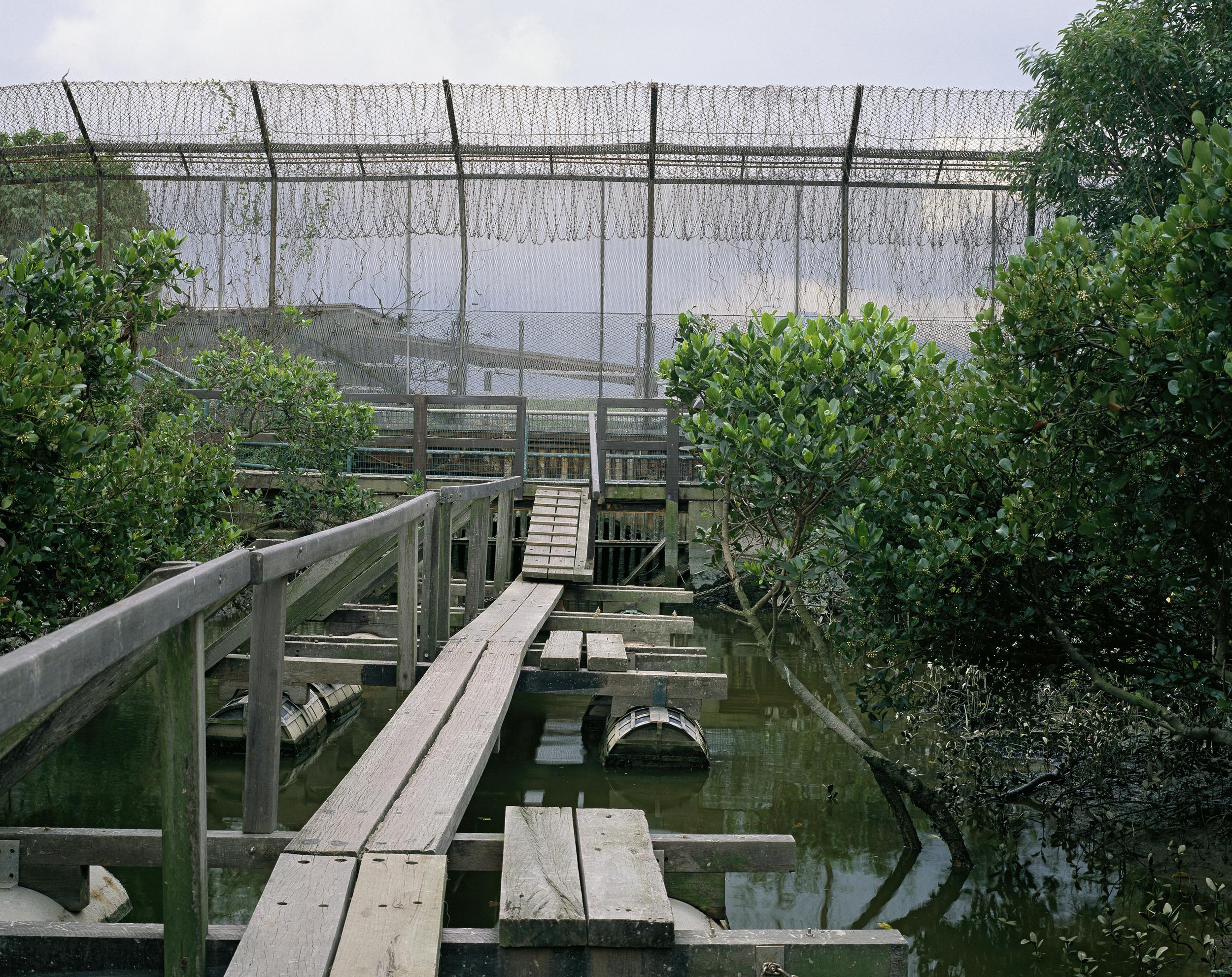 China Border (2010)