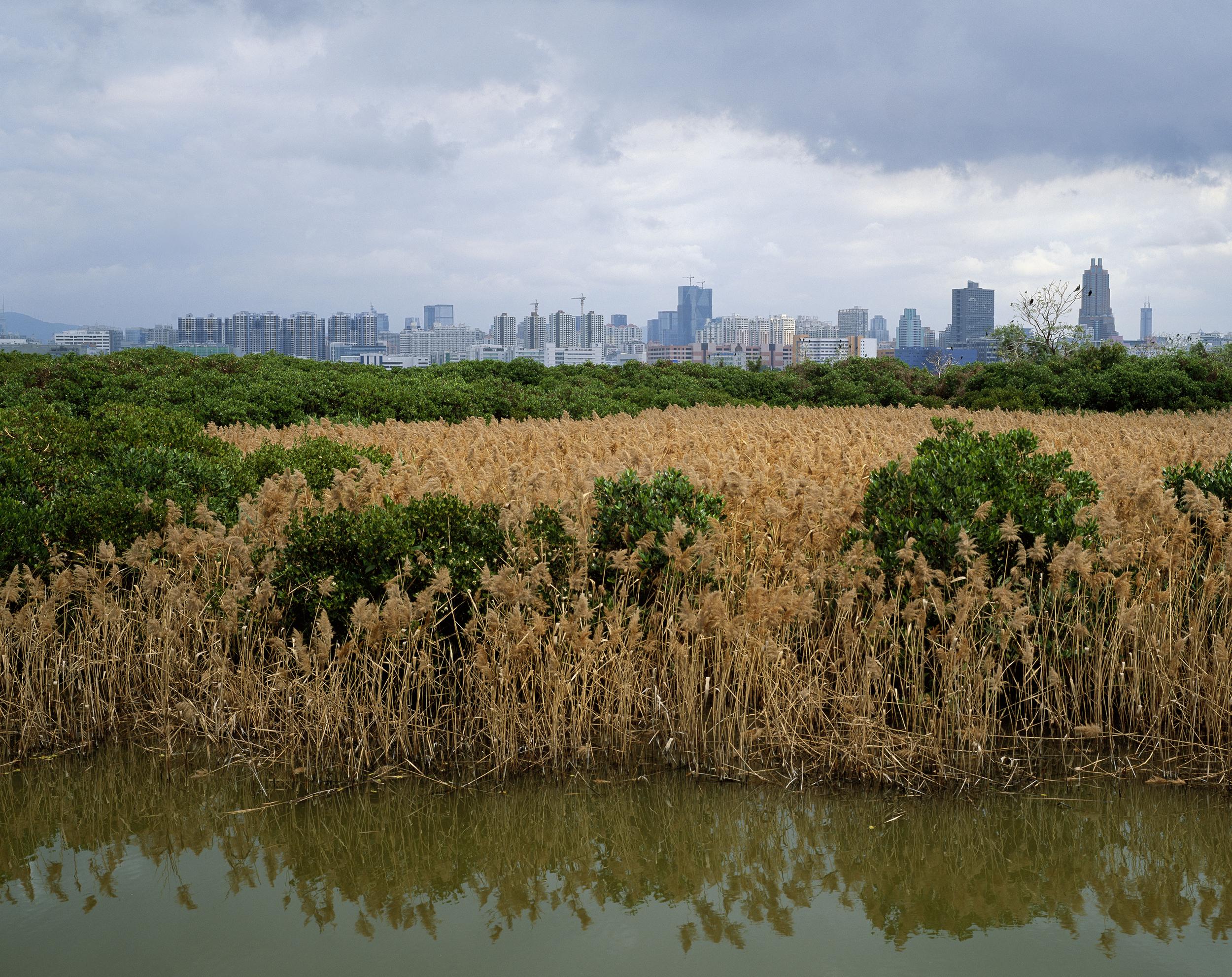 View To Shenzhen (2010)