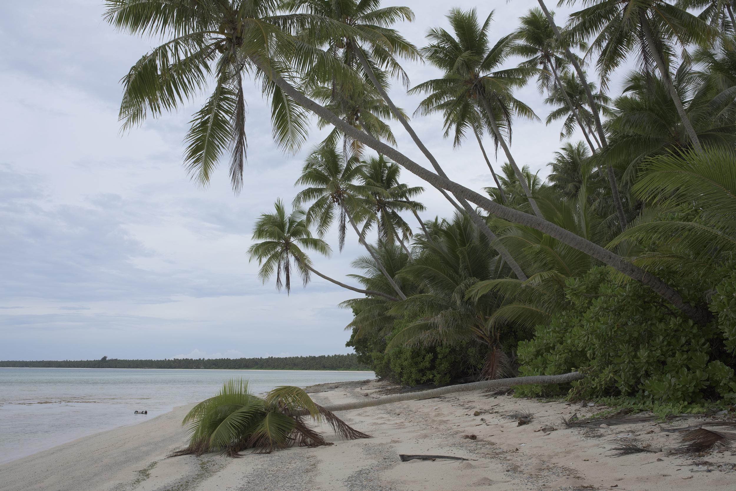 Kebjeltak Island #2, Arno Atoll (2015)