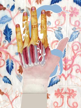 """""""HAND"""""""