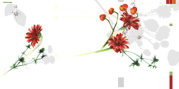 DIK_flowers_page3.jpg