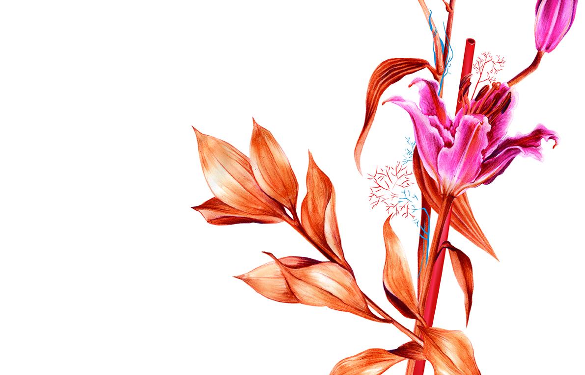 fleur_de_lis1.jpg