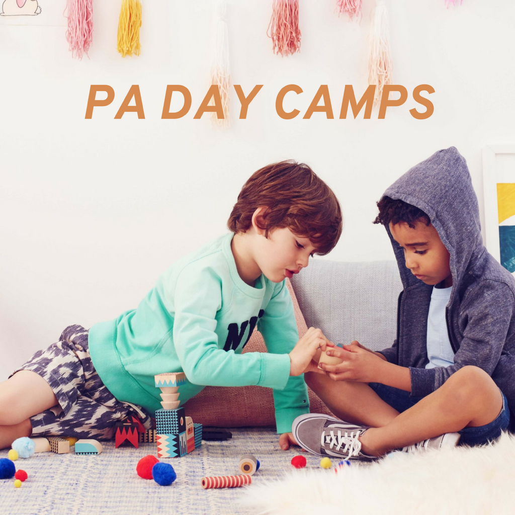 PA DAY CAMPS.png