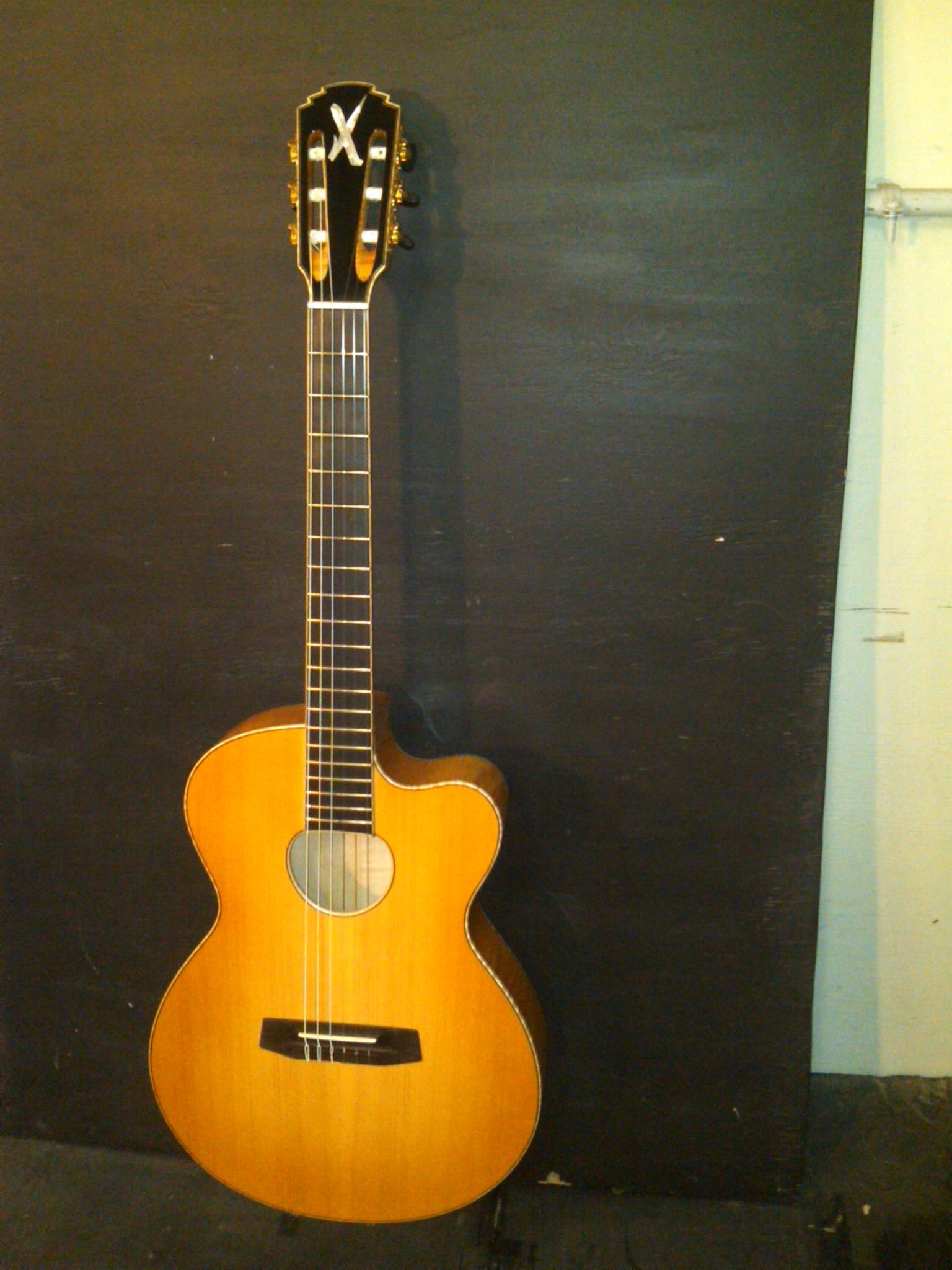 borys_guitars_d87654ca_552521.jpg