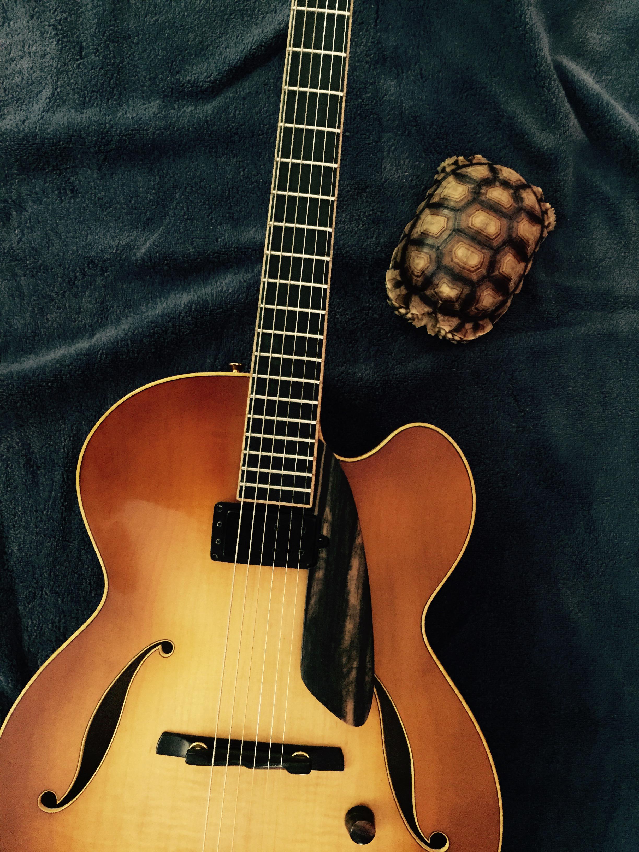 borys_guitars_friends_138.jpg