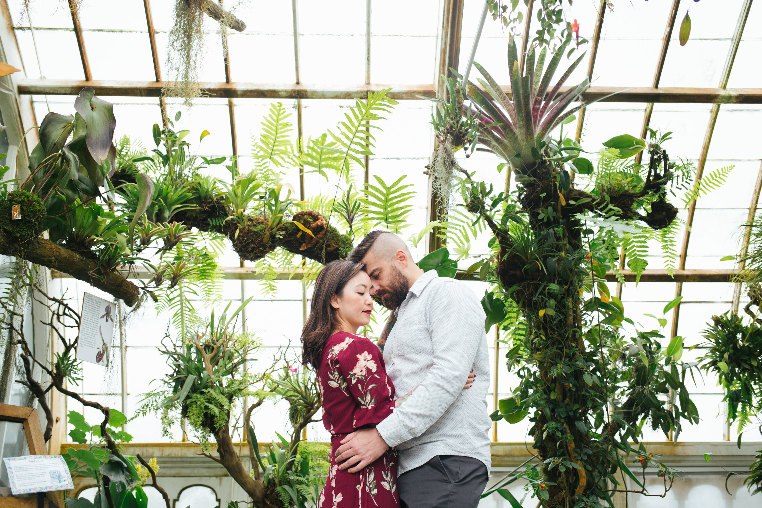 SF Conservatory of Flowers + In-N-Out Engagement Session
