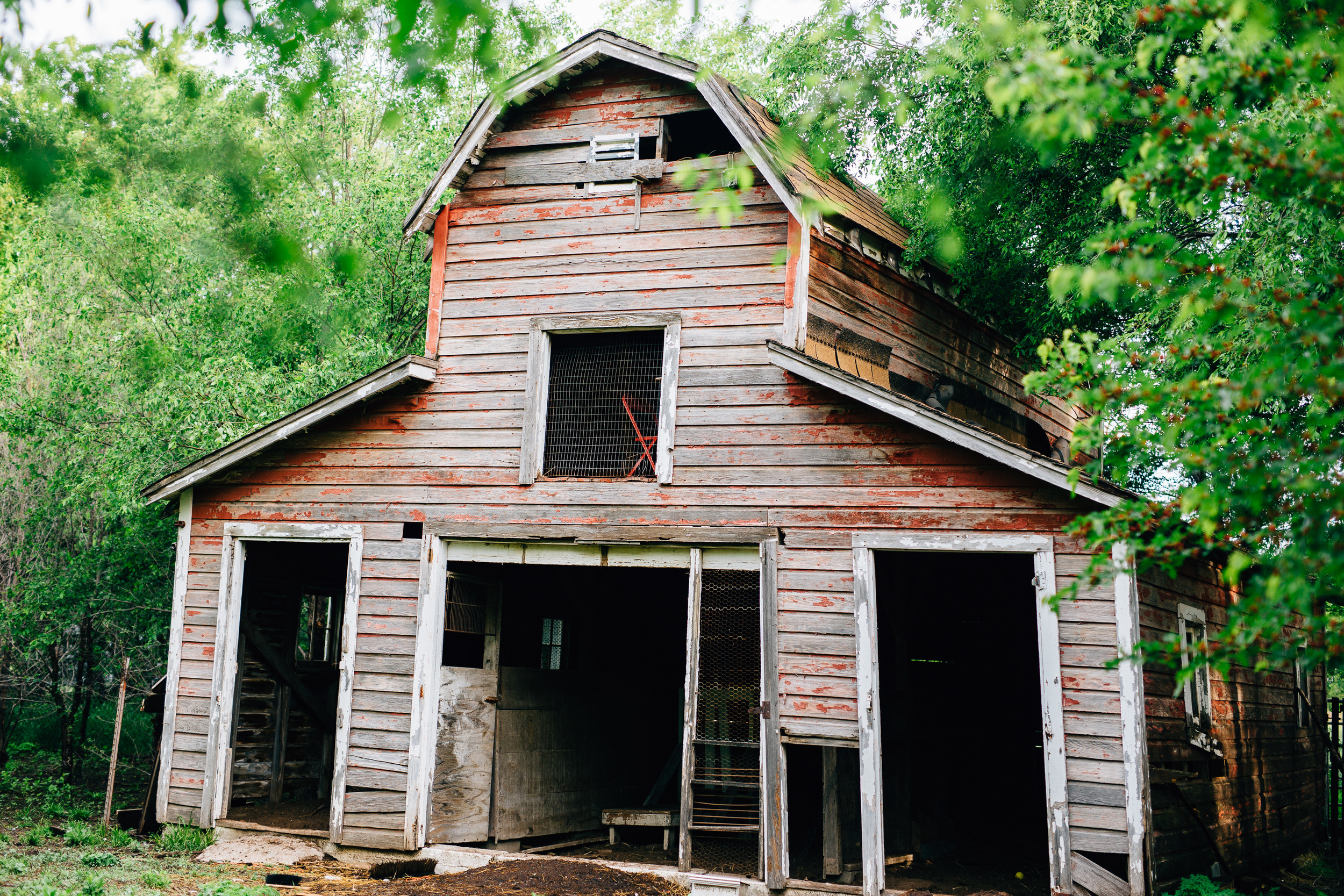 The barn on our land - a future renovation project!
