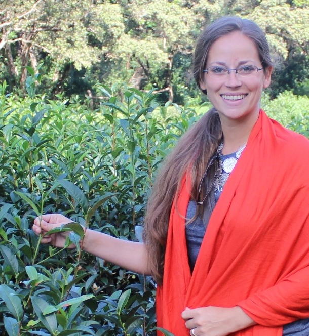 Oh the beautiful tea plants!!! - I got to visit some amazing tea farms and see the art of growing and processing the world's most popular beverage!
