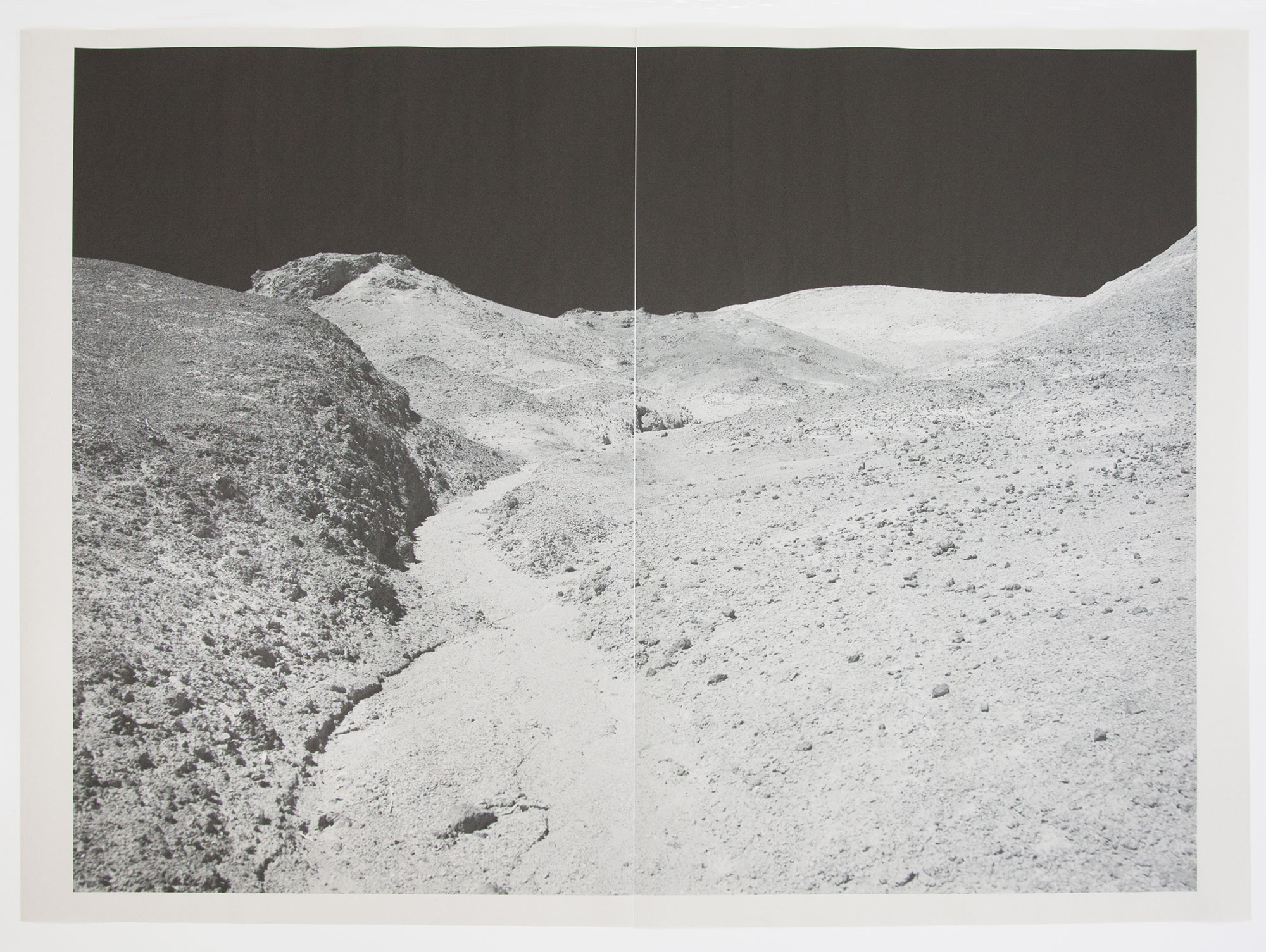DV_8283 , unique diptych pigment print on newsprint, 36 x 24 inches, 2015