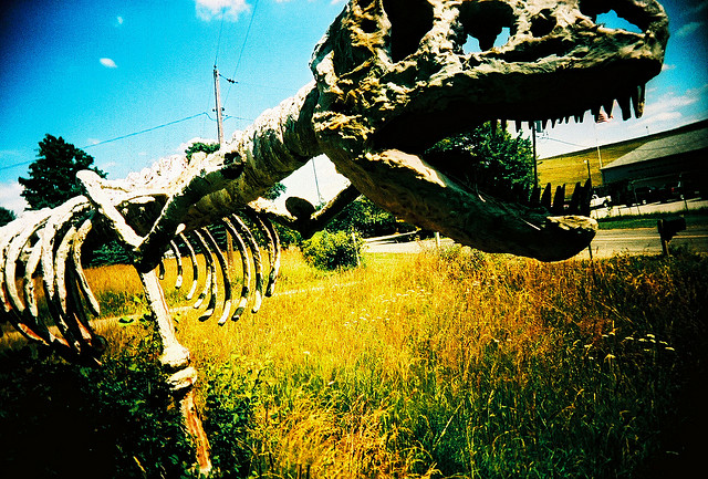 """IMAGE2 ("""" Dinosaur ,"""" by Kevin Dooley.  Licensed under Attribution 2.0 Generic (CC BY 2.0).)"""
