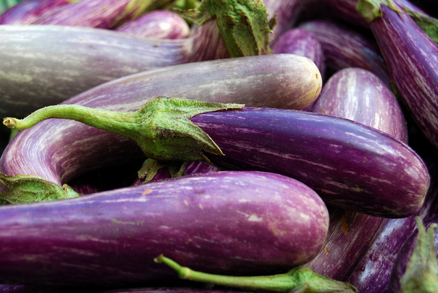 """IMAGE 6  ("""" Eggplant ,"""" by Alice Henneman. Licensed under  Attribution 2.0 Generic (CC BY 2.0).)"""