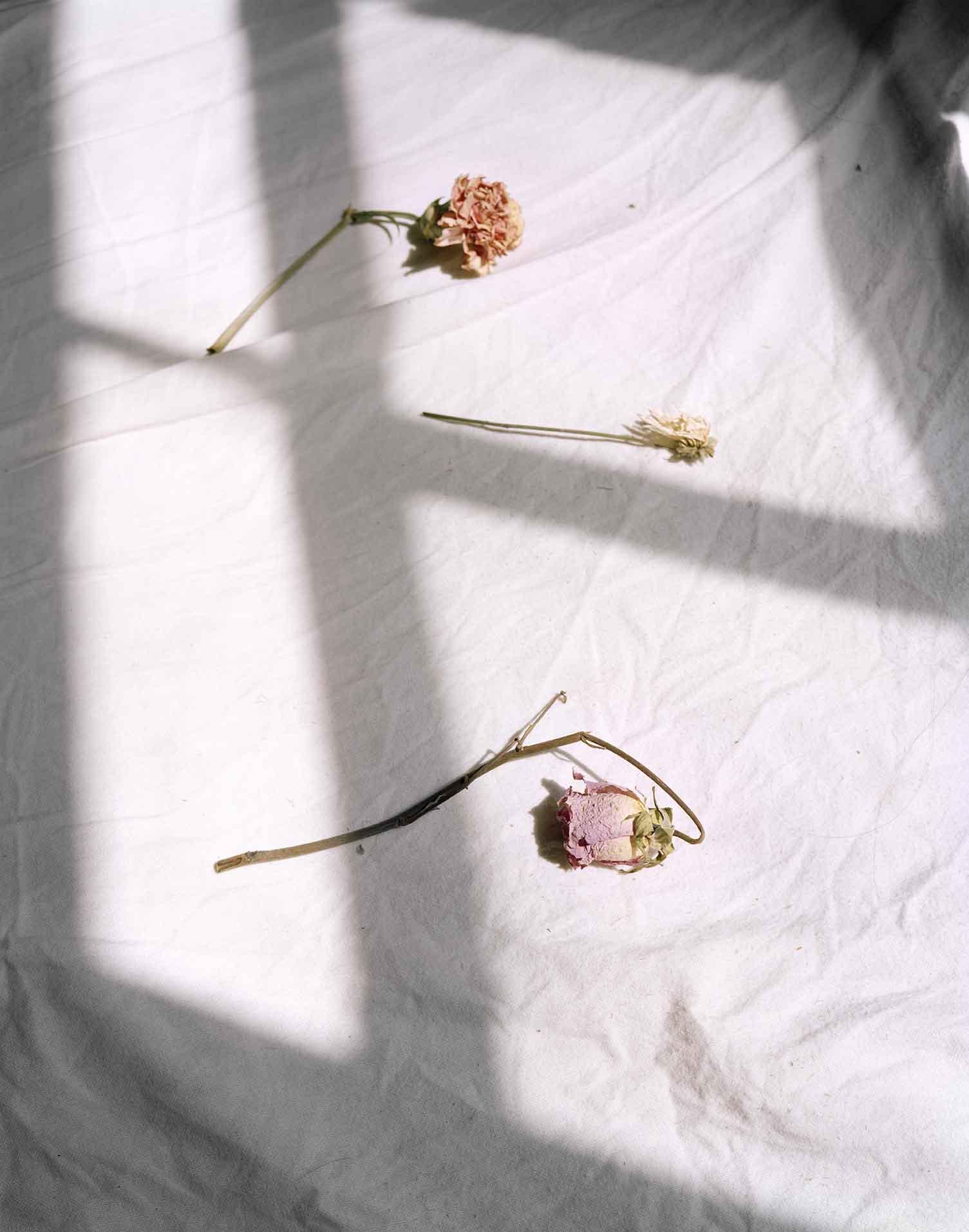 flowers on bed 001.jpg